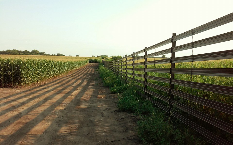 fence in field